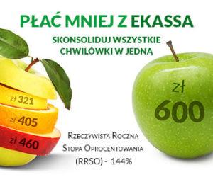 Pożyczki dla zadłużonych przez internet w Ekassa.pl