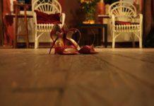 Jak dopasować buty na wesele do sukienki? Wybieramy wygodne szpilki na wesele!