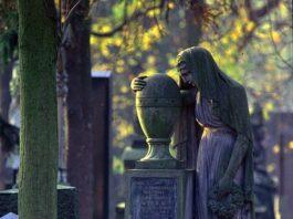Sprzątanie grobów na terenie miasta Gdańsk